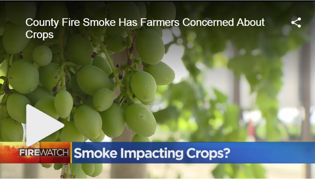 County Fire Smoke Has Farmers Concerned About Crops