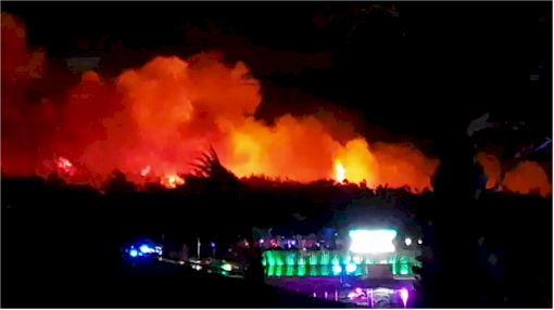 Thousands evacuated as forest fire bears down on Croatia music festival